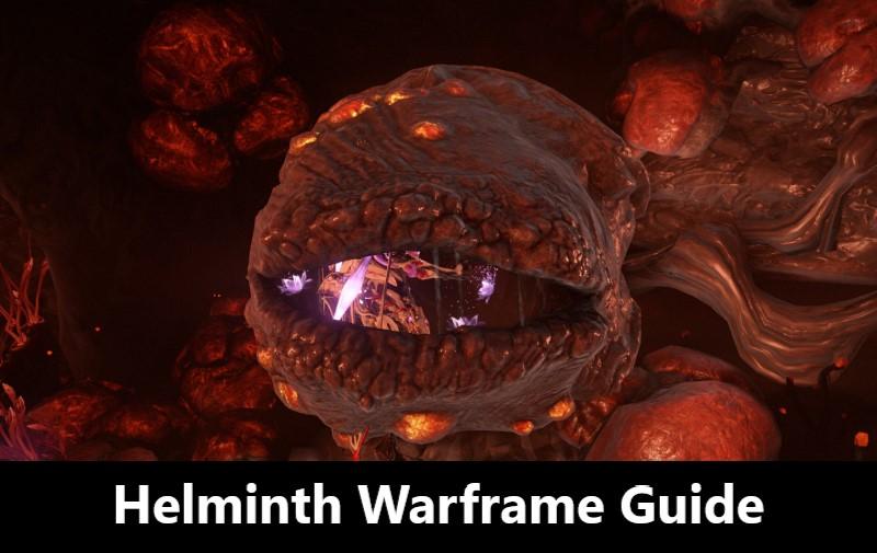 Helminth Warframe Guide