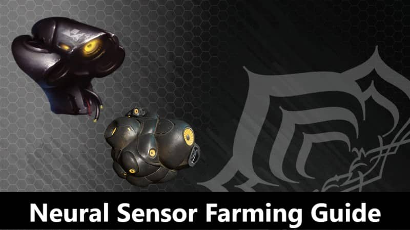 Neural Sensor Farming Guide